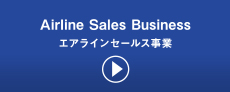Airline Sales Business