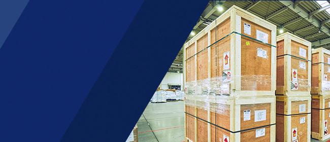 International Cargo|ANA Cargo